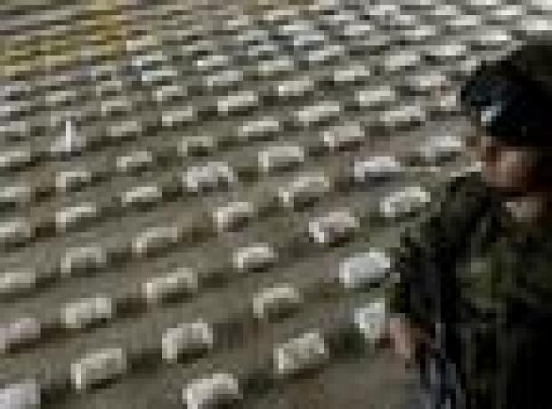 Kolombiya: 'Barış korkusu kokain üretimini patlattı'